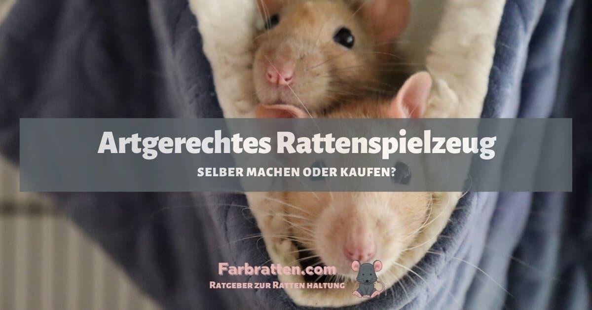 Artgerechtes Rattenspielzeug - FB 2