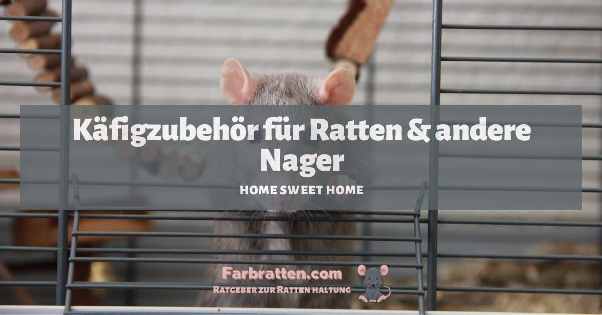 Käfigzubehör für Ratten - FB 2