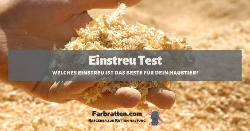 Einstreu Test - FB 2