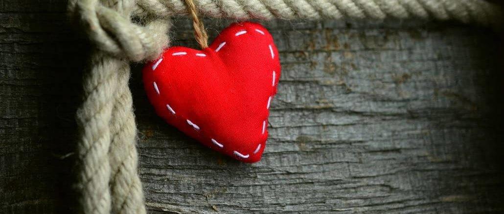 Trauer Ratten Rotes Herz