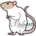 Capped - Ratte