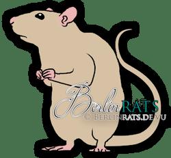 Self - Ratte