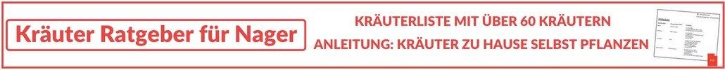 Kräuter Ratgeber Banner Content