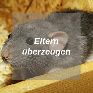 Eltern überzeugen wegen Ratten