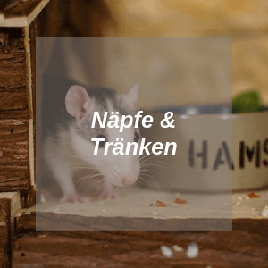 Näpfe und Tränken für Ratten