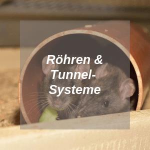 Röhren und Tunnelsysteme für Ratten