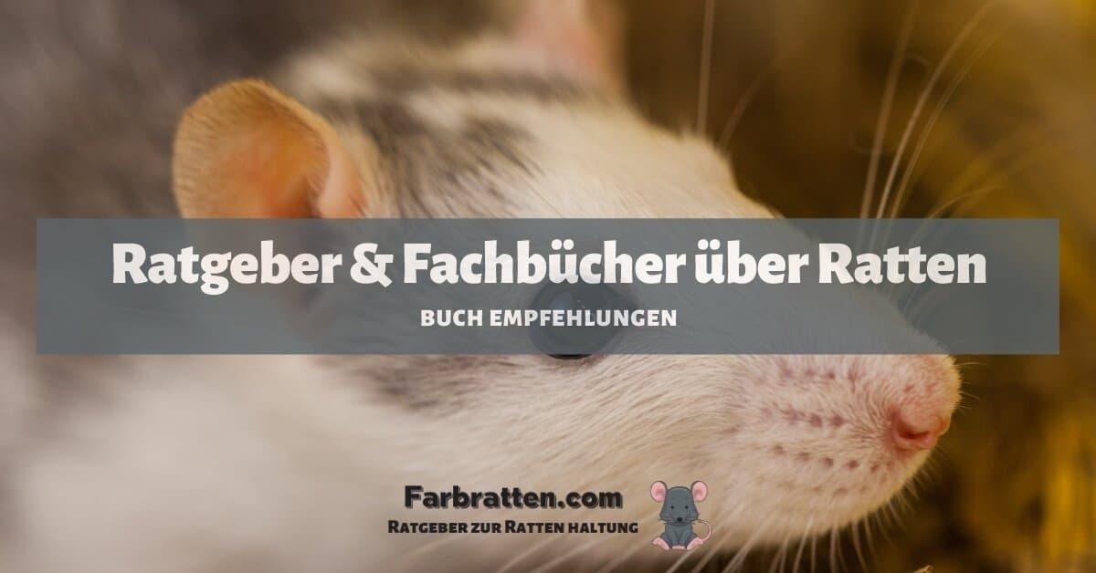 Ratten Ratgeber - FB 2
