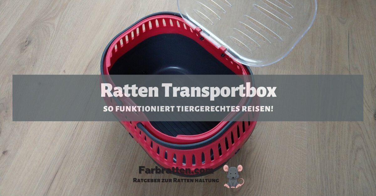 Ratten Transportbox - FB 2