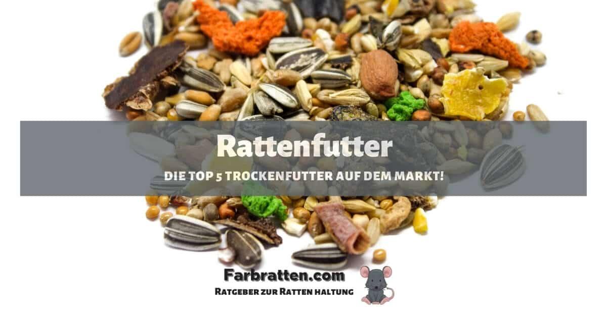 Rattenfutter - FB 2
