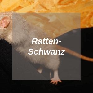 Rattenschwanz