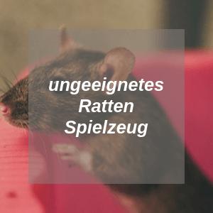Ungeeignetes Rattenspielzeug