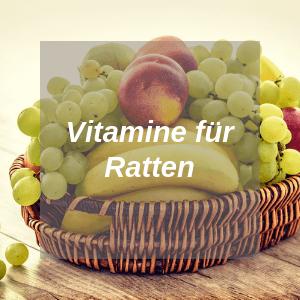 Vitamine für Ratten