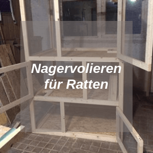 Nagervolieren für Ratten