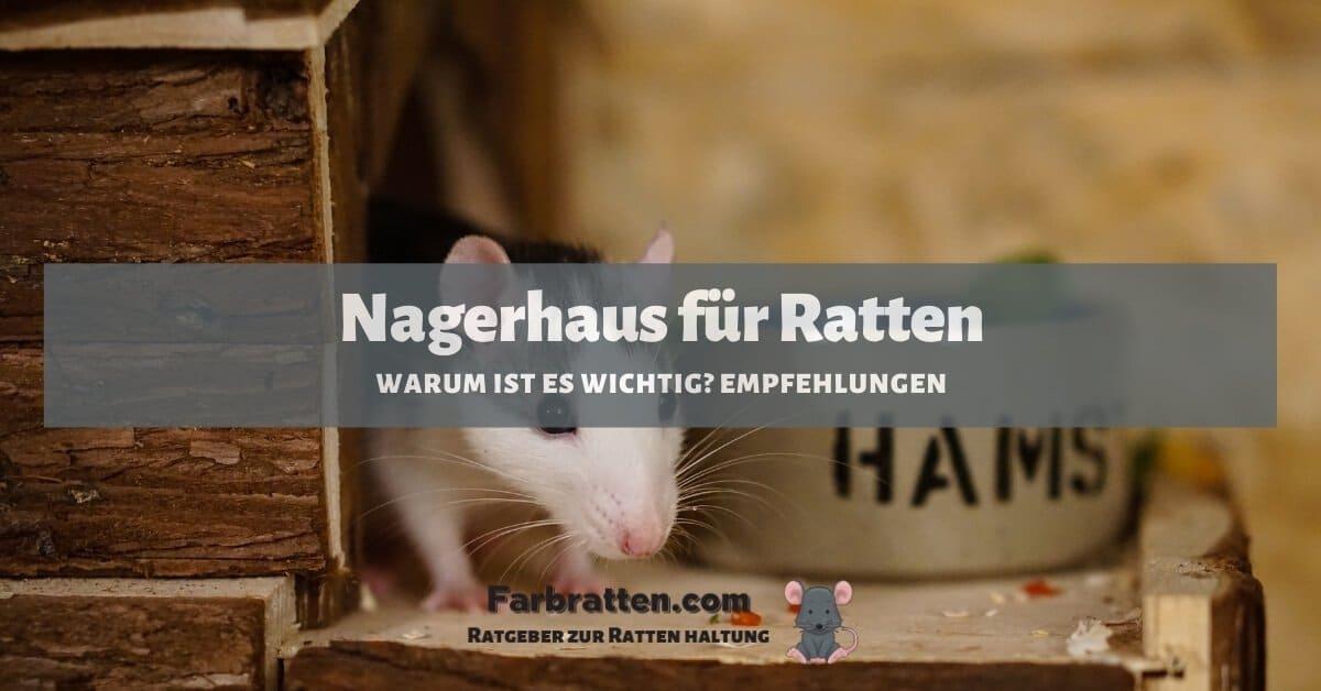 Nagerhaus für Ratten - FB 2