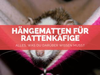 Hängematten Ratten - FB