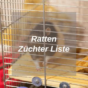 Ratten Züchter Liste - Hub