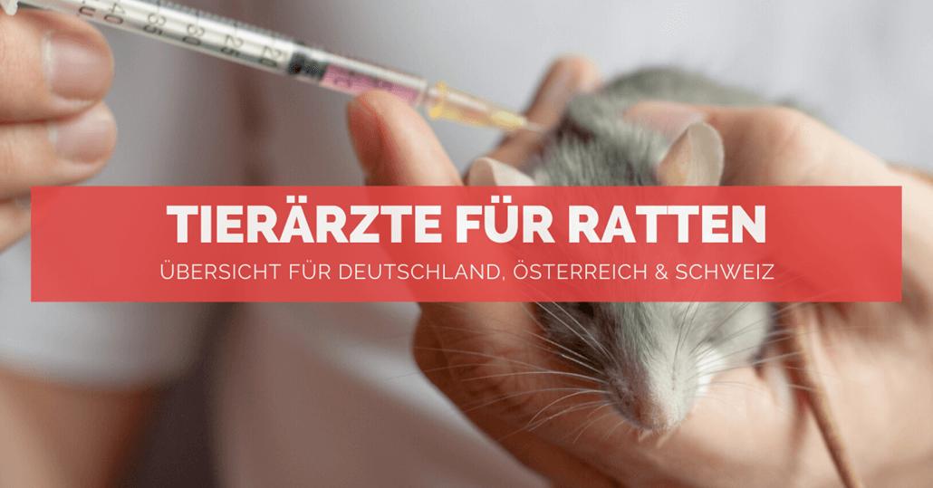 Tierärzte für Ratten - FB