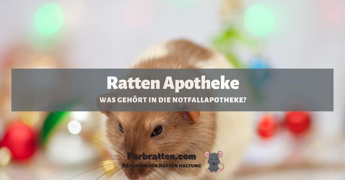 Ratten Apotheke - FB 2