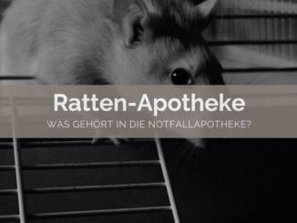Ratten Apotheke - FB