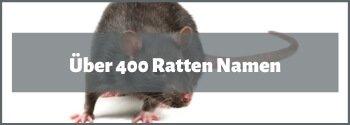 Ratten Namen Liste