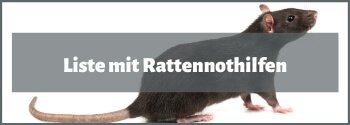 Rattennothilfe