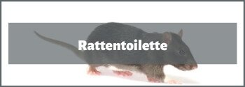 Rattentoilette