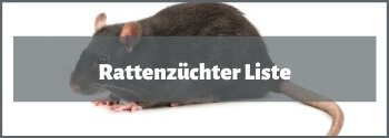 Rattenzüchter
