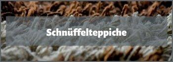 Schnüffelteppich