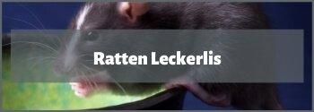 Ratten Leckerlis